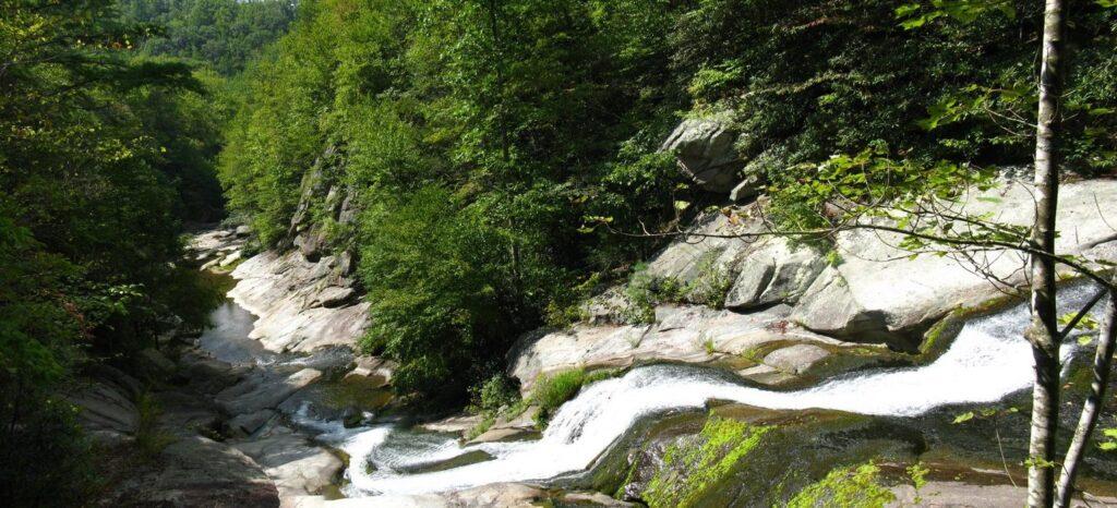 Mountain stream near todd